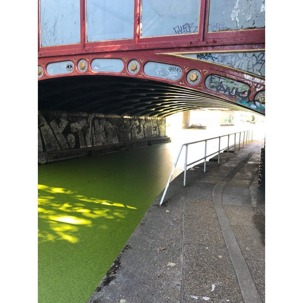 Regents Canal ️